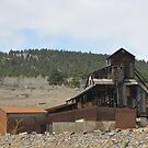 Old Mine in Central City Colorado by janetmarston