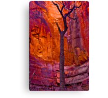 Zions Crimson Cliffs Canvas Print