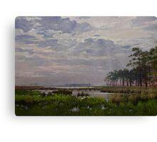 Marsh Of Blackwater Eastern Shore Canvas Print