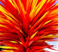Colorado by Chihuly Sticker