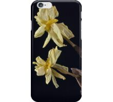 Spring Remembered III iPhone Case/Skin