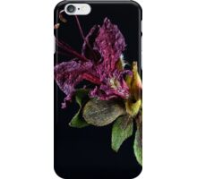 Spring Remembered I iPhone Case/Skin