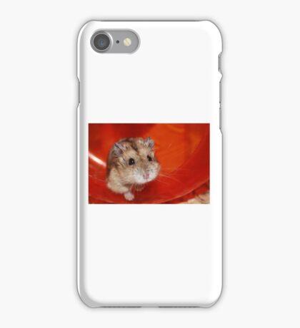 Hamster iPhone Case/Skin