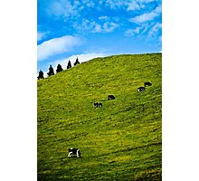 life by fives Photographic Print
