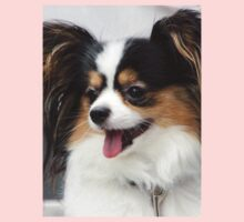 Funky Japanese Chin