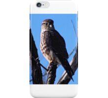Brooklyn Falcon III iPhone Case/Skin