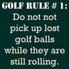 Golf Rule # 1: Do not pick up lost golf balls... by Buckwhite