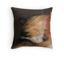 Wash Day Throw Pillow