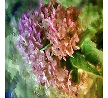 Pretty In Paint 3 Photographic Print