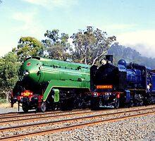 Steam Locomotives by Christopher Biggs