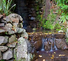 Waterfall at Alfred Nicholas Gardens by Vicki Moritz