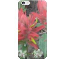 Spring Bloom iPhone Case/Skin