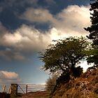 moorland gateway by frank Yule