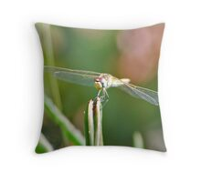 Living helicopter Throw Pillow