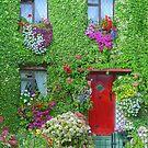 Flower House by Kelly Cavanaugh