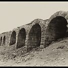 Old Lime Stone Kilns - Rosedale by Trevor Kersley