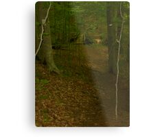 Prince William National Forest 3 Metal Print