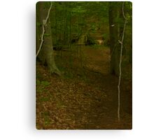 Prince William National Forest 3 Canvas Print
