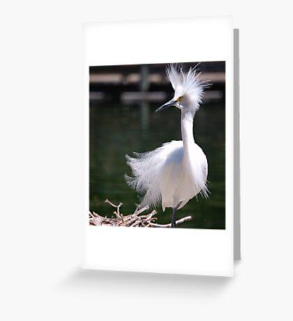 Amazed: Greeting Card