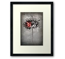 A Dream of Seasons Gone Framed Print