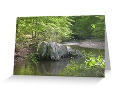 Prince William National Forest 6 Greeting Card