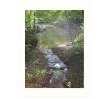 Prince William National Forest 7 Art Print