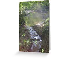 Prince William National Forest 7 Greeting Card