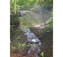 Prince William National Forest 7 Photographic Print