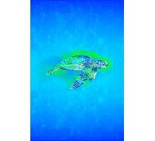 Swimming Sea Turtle Photographic Print