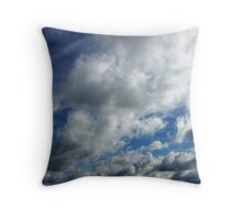 Feathers and Fluff Throw Pillow