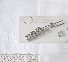 Vintage White Linen by Evelyn Flint - Daydreaming Images