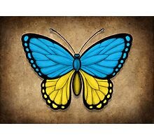 Ukrainian Flag Butterfly Photographic Print