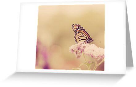 Flutterbye by Kristybee
