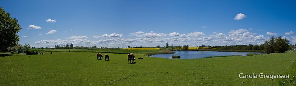 View at Gundsømagle (DK) by Carola Gregersen