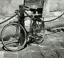 Bicicletta e Piccioni by Laura Cameron