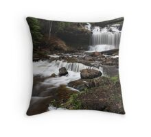 Wagner falls original Throw Pillow