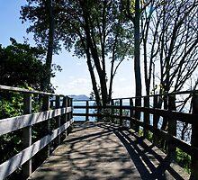 Bridge At Langmoor-Lister Gardens by Susie Peek