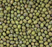Mung Beans by Zosimus