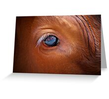 Bulls Eye! Greeting Card