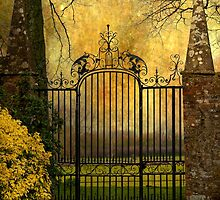 Magic Gate by Svetlana Sewell