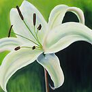 """""""Bangalow Lily """" by artselaine"""
