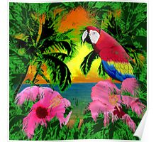 Palm Trees And Island Sunsets Poster