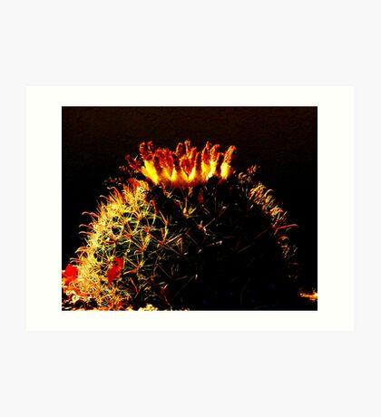 Cactus Burning Art Print