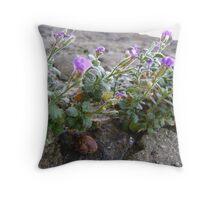 snail shelter 1 Throw Pillow