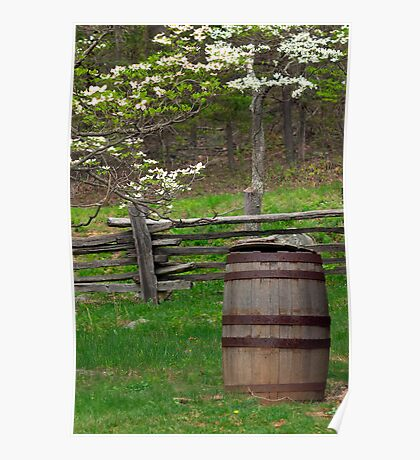 Water Barrel - Blooming Dogwood Poster