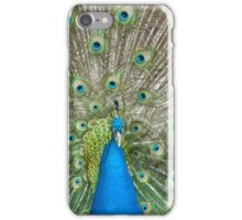 Peacock Scarf iPhone Case/Skin