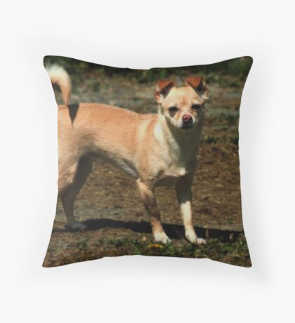 LeeLa Standing Proud Throw Pillow