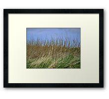 the march of vegetation Framed Print