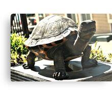 Big Turtle Metal Print