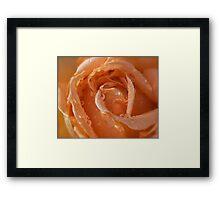 peaches... Framed Print
